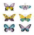 cute butterflies set vector image vector image