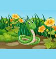 green snake in garden vector image vector image
