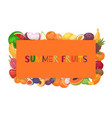 summer fruit banner food vector image