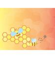 Honey bees vector image