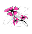 blossom bloom on white backgroundpink flower draw vector image
