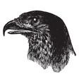 brazilian eagle head vintage vector image vector image