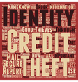 Identity Theft Stop It Now text background vector image vector image