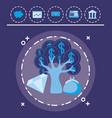 money tree icon vector image