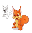 red squirrel vector image