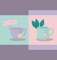 set of cups tea isolated icon vector image