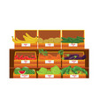 shelves with fresh vegetable assortment wooden vector image