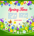 spring time holiday wish or greeting poster vector image vector image