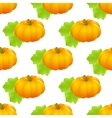 pumpkin seamless isolated vector image