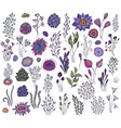 collection hand drawn fantasy nature elements vector image vector image