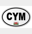 cym plate vector image