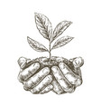 hands holding handful earth with growing plant vector image vector image