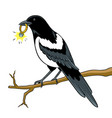 magpie bird with golden ring pop art vector image vector image