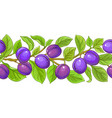 plum brances pattern on white background vector image vector image