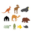 Set of wild animals on white background vector image