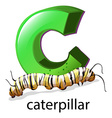 A letter C for caterpillar vector image vector image