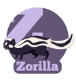 ABC Cartoon Zorilla vector image
