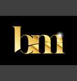 alphabet letter bm b m gold golden metal metallic