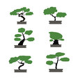 bonsai trees set japanese style isolated vector image vector image