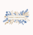christmas frame with winter plants vector image vector image