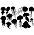 jellyfish silhouettes set sea collection vector image vector image