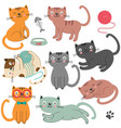 set of of isolated cats character vector image vector image