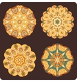 set round lacy ornaments vector image