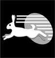 speed white rabbit vector image vector image