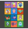 Cartoon owl isolated vector image vector image