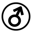 Gender male symbol button vector image