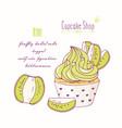 hand drawn kiwi cupcake vector image vector image