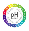 ph meter for measuring acid alkaline balance vector image vector image