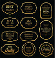 retro golden vintage frame collection vector image
