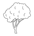 Tree with a rounded crown icon outline style vector image vector image