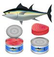 tuna fish can steak mockup set realistic style vector image