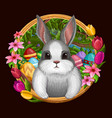 White bunny in frame with flowers isolated on dark