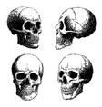set of skull doodle hand drawn vector image
