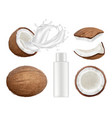 coconut collection fresh tropical coco fruit with vector image vector image