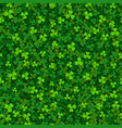 green clover shamrock seamless pattern vector image vector image