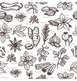 Herbs And Spice Sketch Seamless Pattern vector image