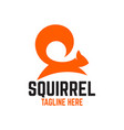 modern squirrel logo vector image