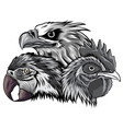 monochromatic eagle mascot logo design vector image vector image