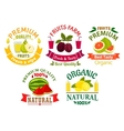 Natural fruit symbols for agriculture design vector image vector image