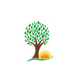 nature tree and vibrant sun logo vector image vector image