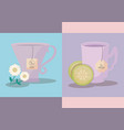 set of cups tea lemon and chamomile icon vector image