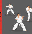 three men demonstrate karate on a dark background vector image vector image