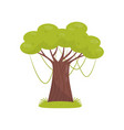 tropical tree element of jungle forest landscape vector image vector image