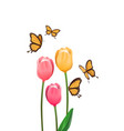 yellow butterfly isolated with pink tulip flower vector image
