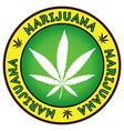 cannabis marijuana leaf badge emblem design vector image vector image