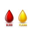drop blood and drop blood plasma blood vector image vector image